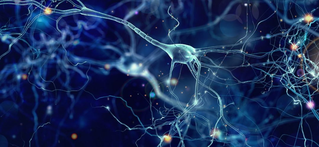 EEGs and COVID-19: Doctors use neuro test to study brain changes